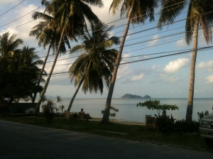 Across the road from my new home in Koh Phagnan